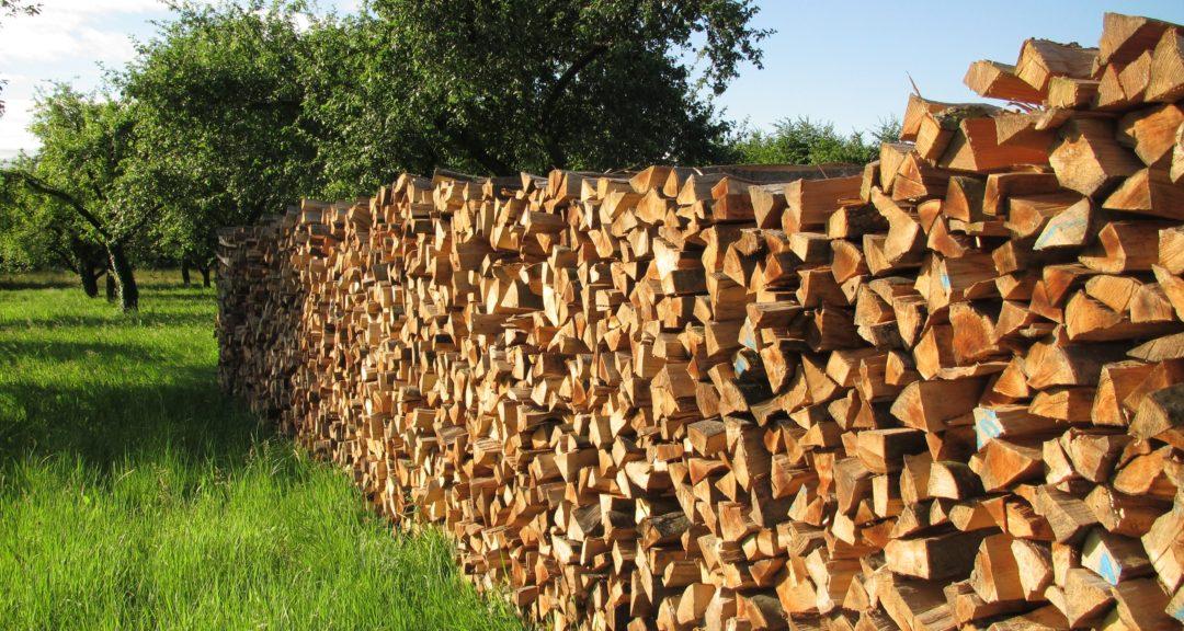 Palivové drevo a rezivo